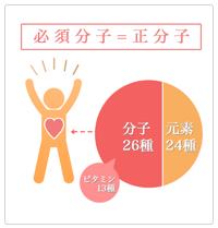 健康カラダ☆ 人間をつくる50種類のもの