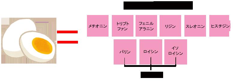 健康カラダ ☆ アミノ酸サプリって、本当に必要なの?