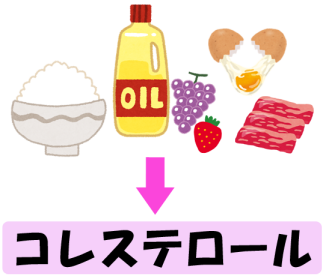 健康カラダ☆ 『 何からコレステロールは作られているの? 』